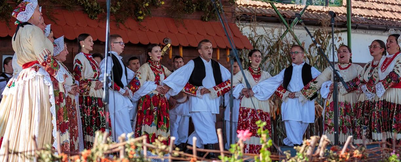 Voloderska jesen 2021. Photo by Damir Pahić