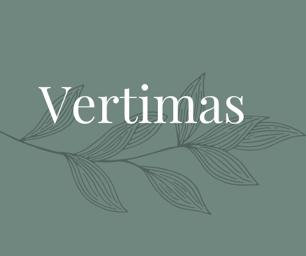 anglu lietuviu vertimo paslaugos vertimas