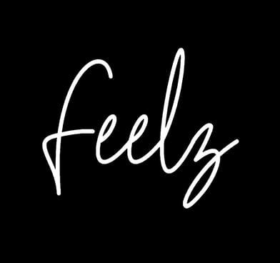 Feelz Podcast