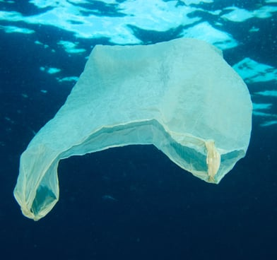 plastique sac océan mer