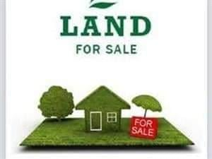 sale of land in Nigeria. Buy house in Lagos and Ogun State Nigeria